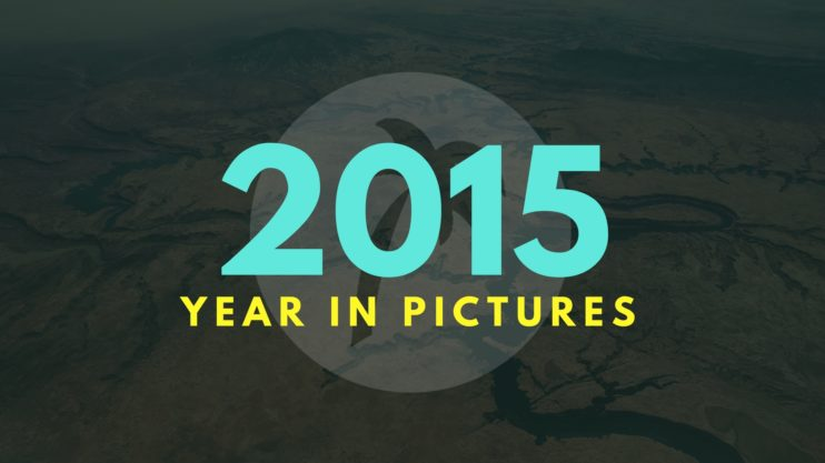 2015 Year In Pictures Image