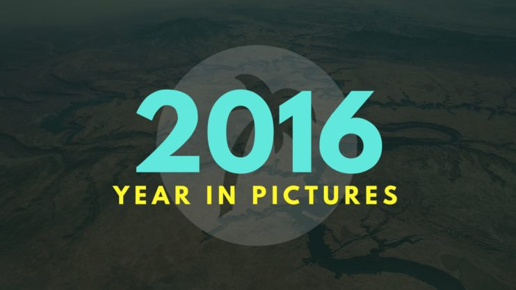 2016 Year In Pictures Image